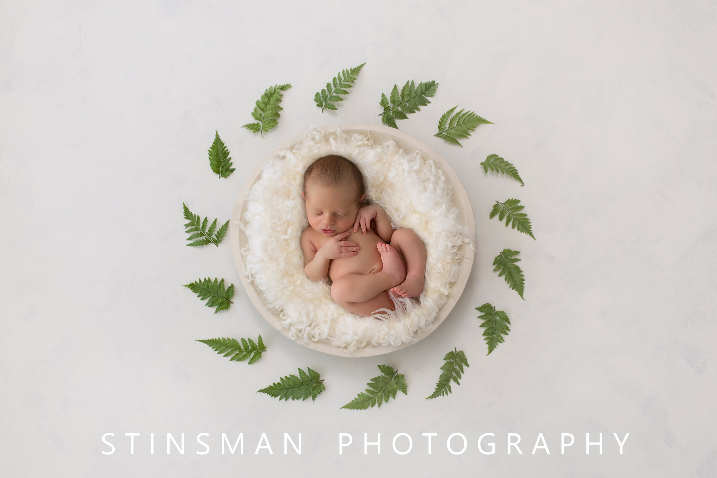 newborn photography in new jersey artwork