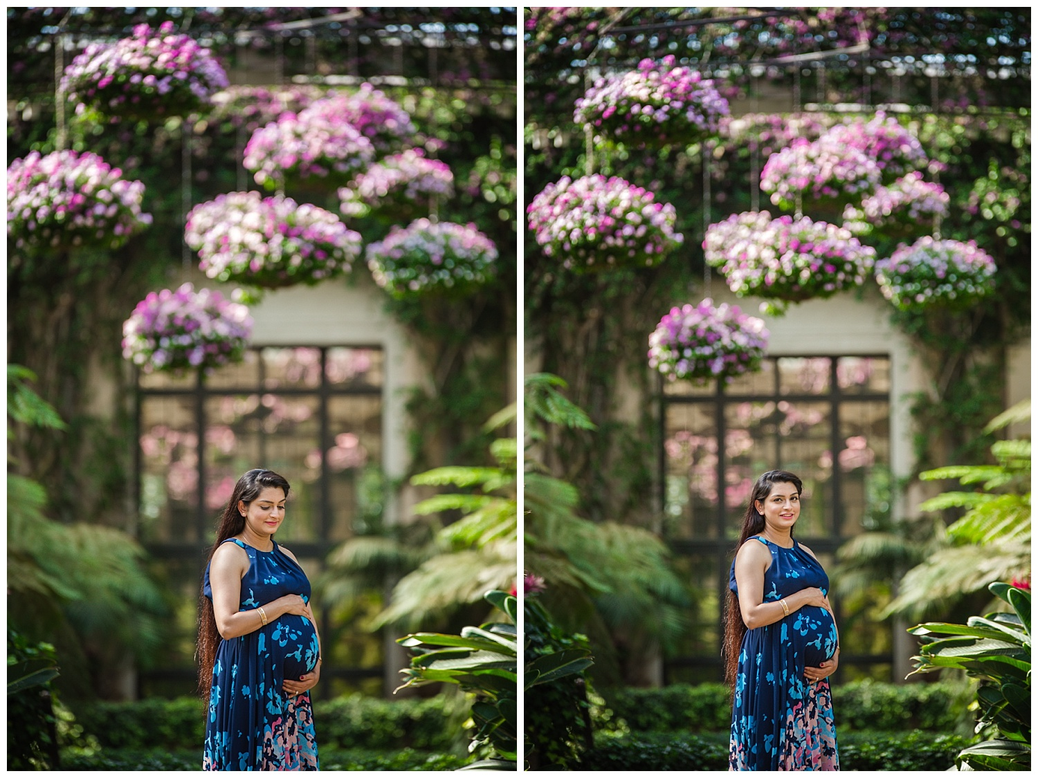 Stunning Indian mom holding her pregnant belly at longwood gardens in Pennsylvania.