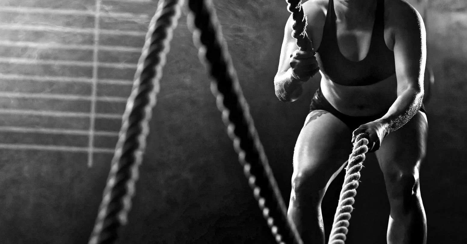 ropes.jpg
