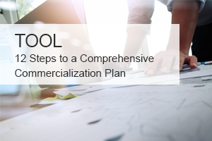 Follow this 12-step outline to create a comprehensive commercialization plan for your medical or biotechnology product.