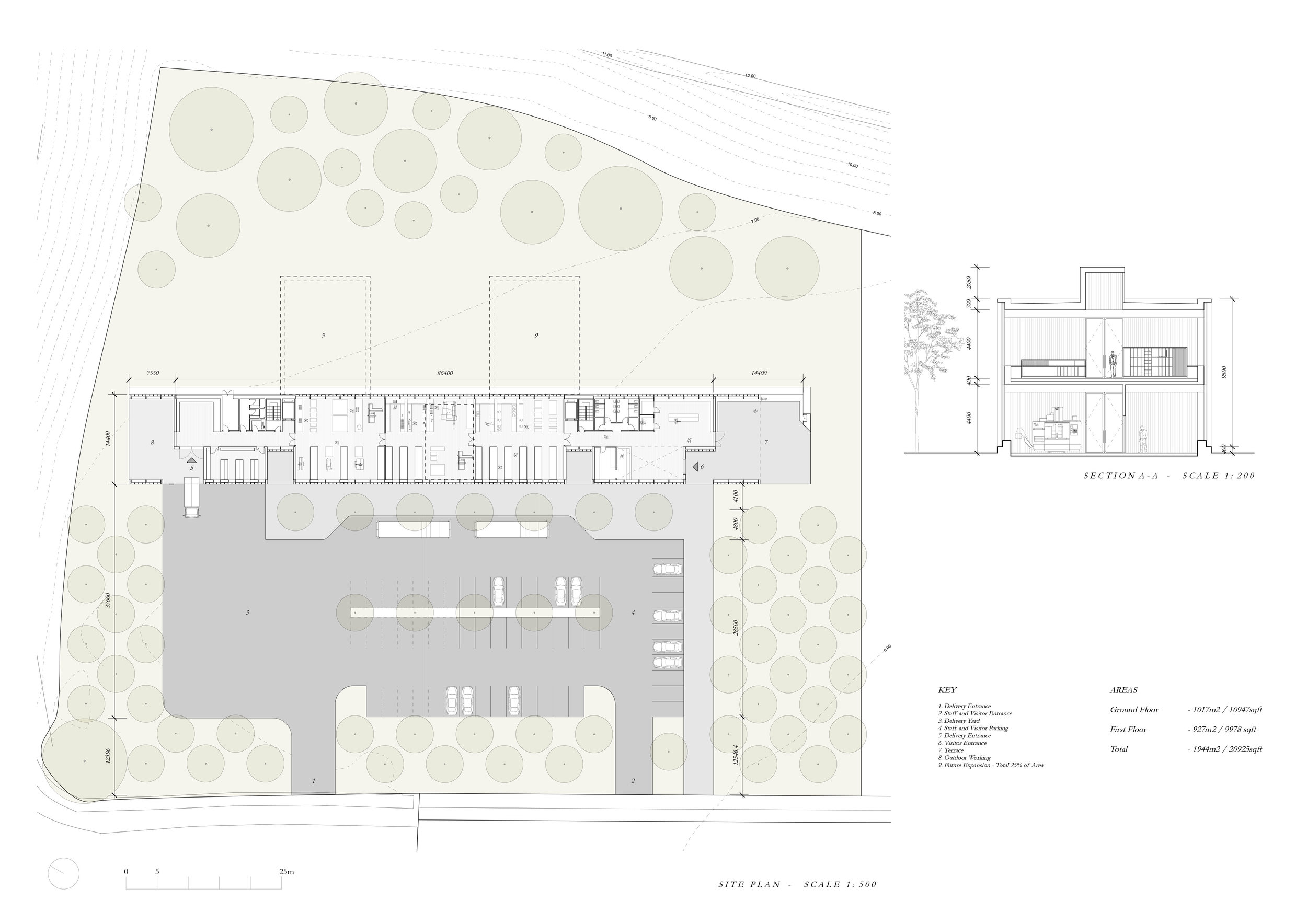 Site Plan A Small.jpg