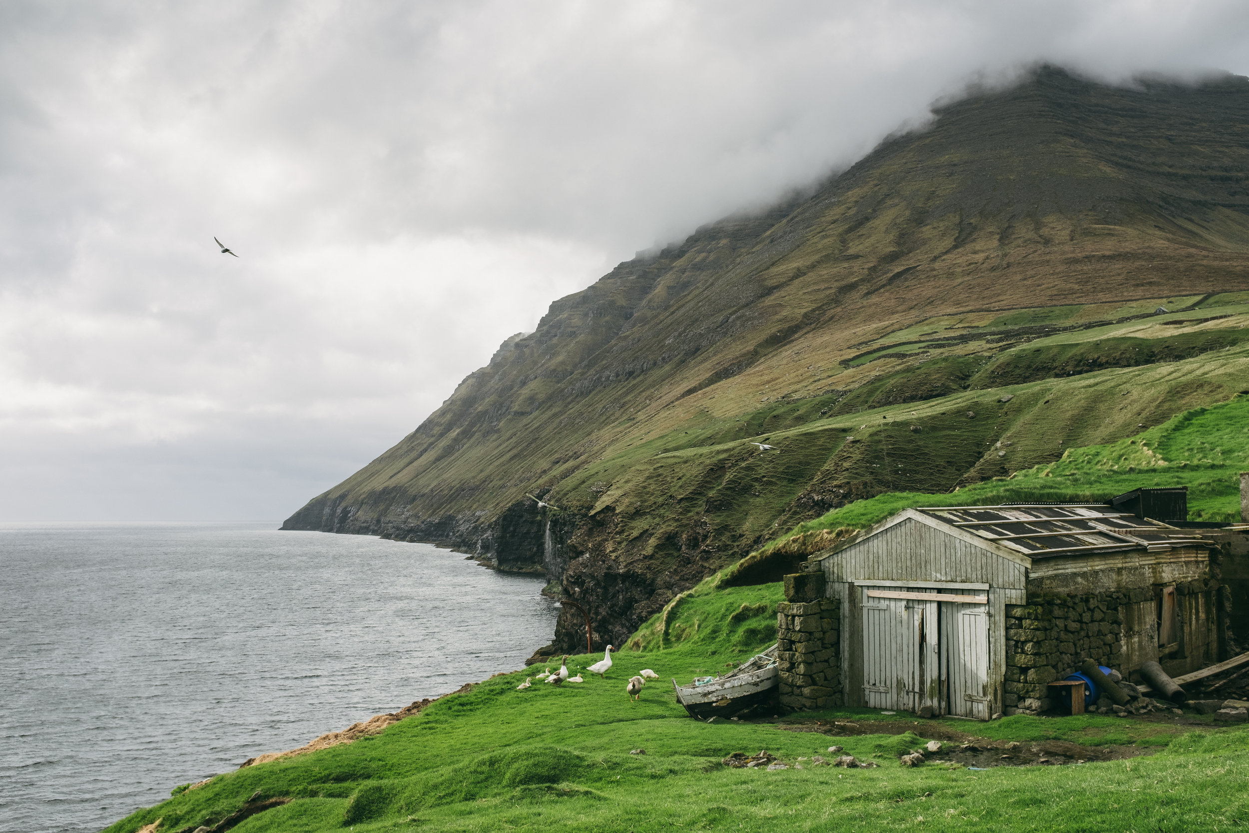 Faroe Islands F-20170523-708.jpg