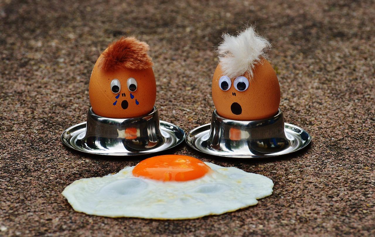 egg-1364869_1280.jpg