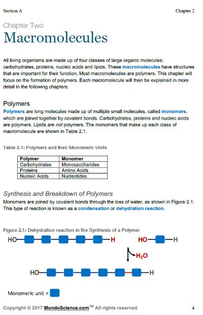 Macromolecules image 2.PNG