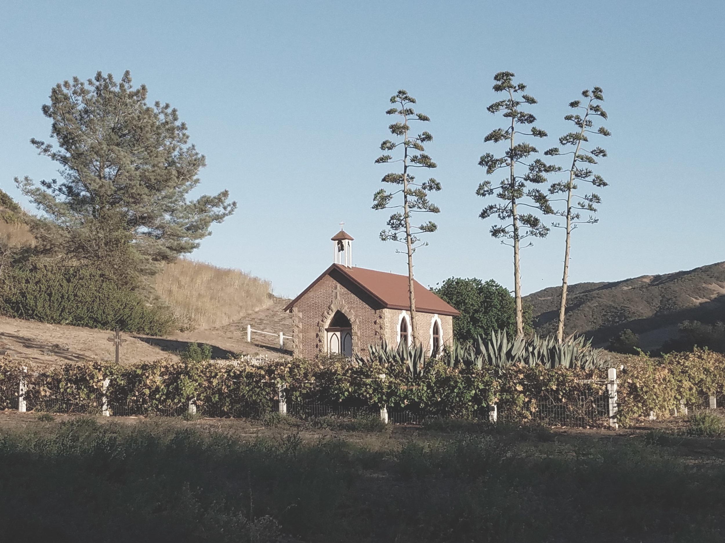 santa cruz island landscape architecture ten over studio.jpg