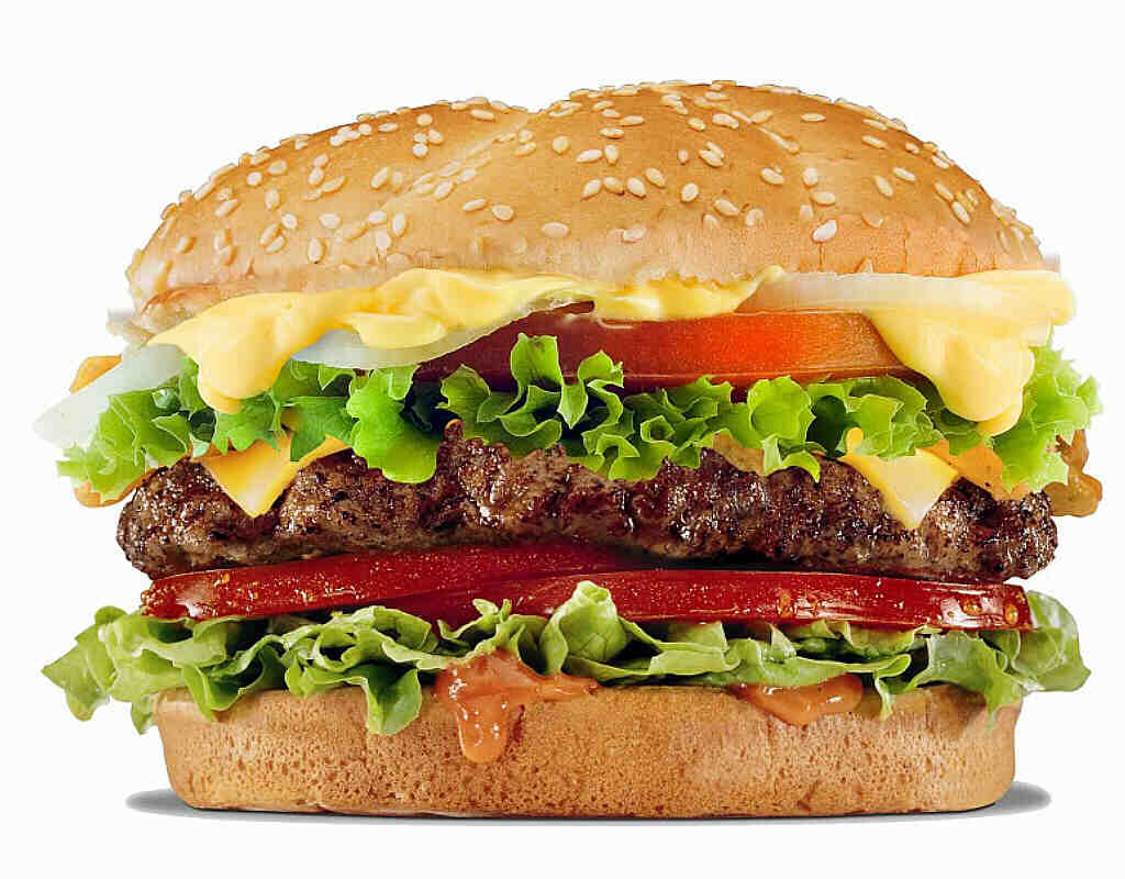 Cheese Burger 9.50€