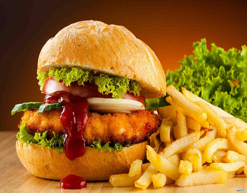 Chicken Burger 9.50€