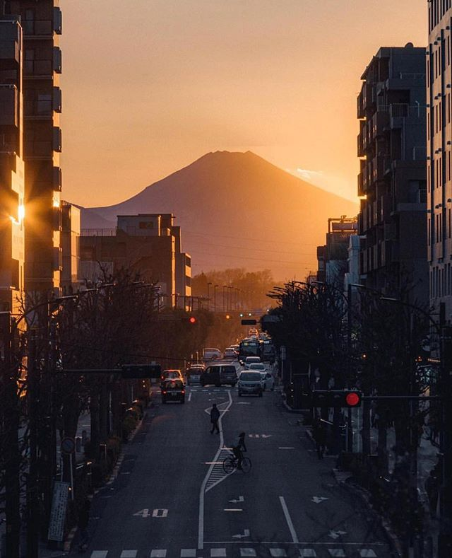 Exploring Japan 🇯🇵🌅 .pic by @norito_m . . . . #tokyo #japan #fuji #mtfuji #travel #trip #mytrip #viagem #ferias #photo #photography #photooftheday #picoftheday #tbt