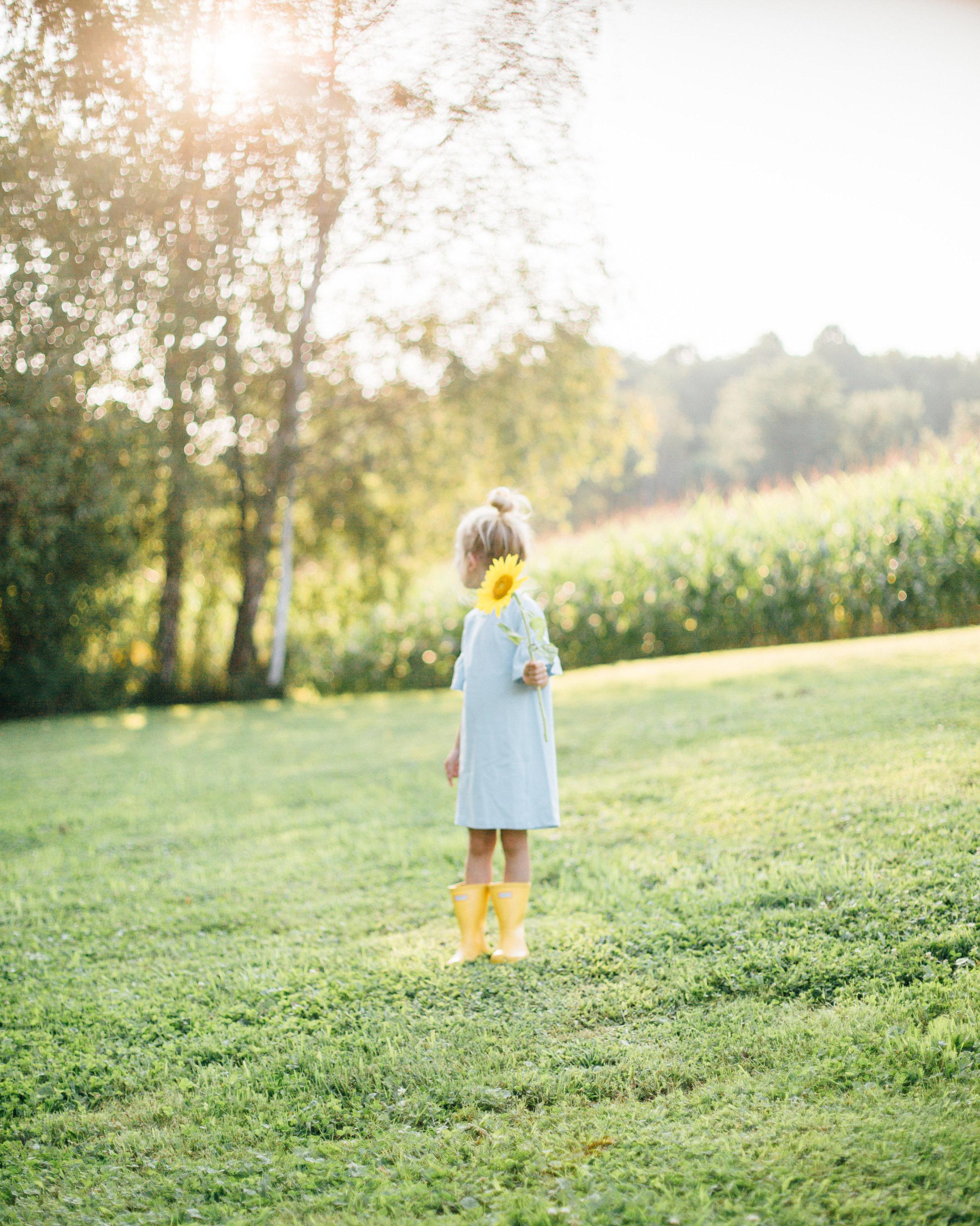 bell sleeve dress little platz