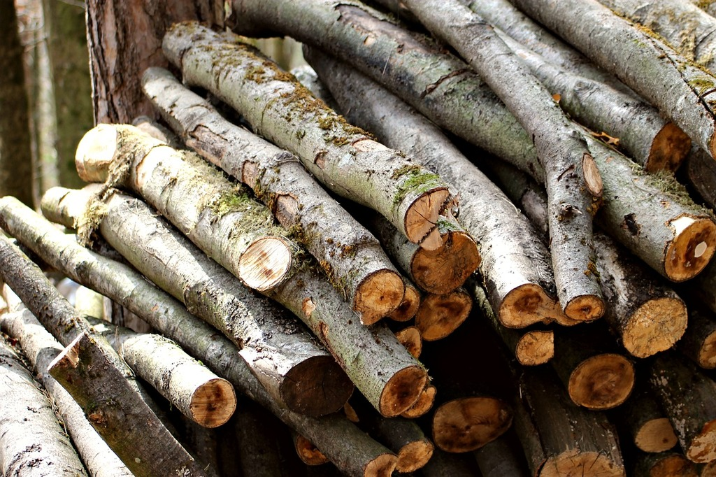 wood pile.jpeg