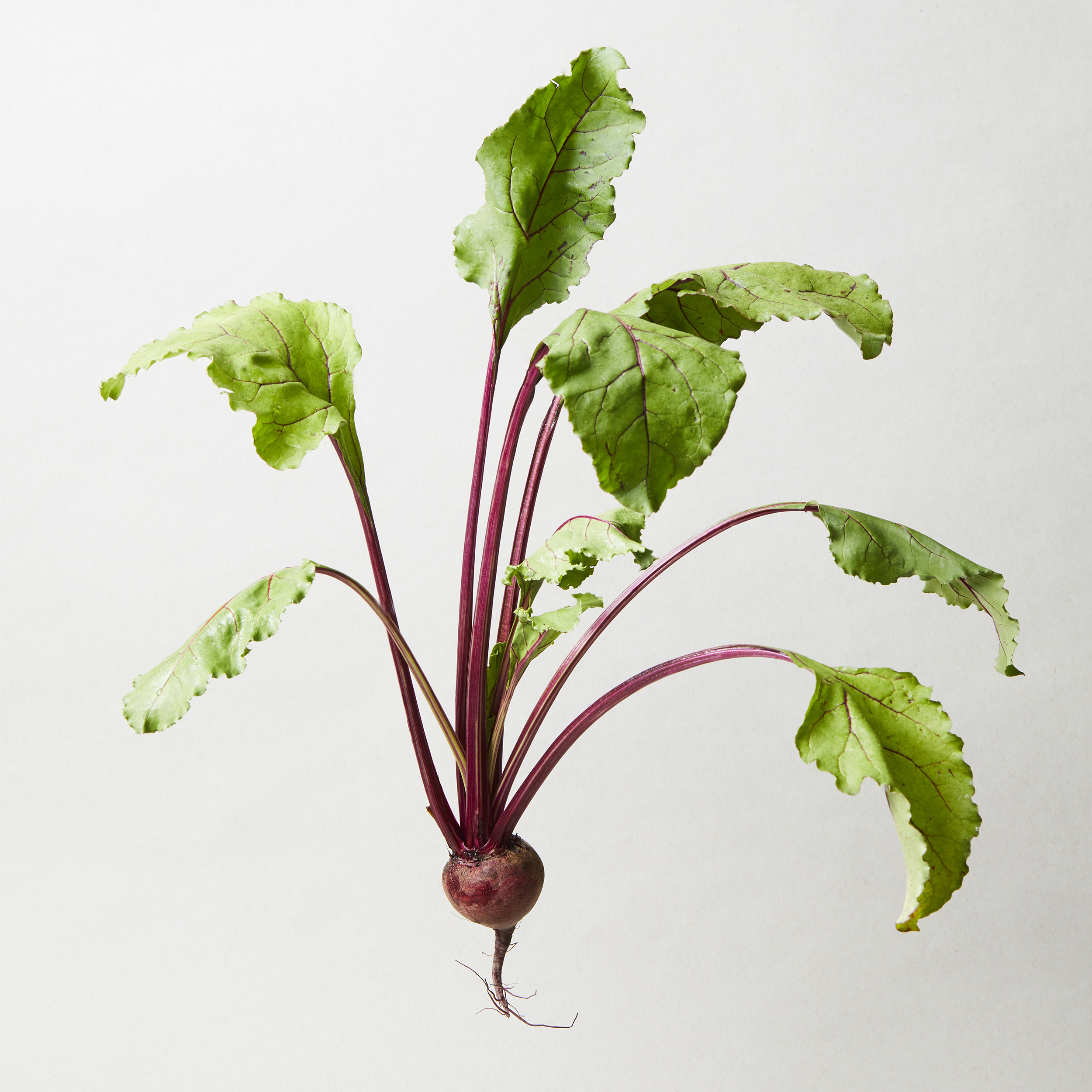 MK_Mixers_Ingredients_Beets_008.jpg