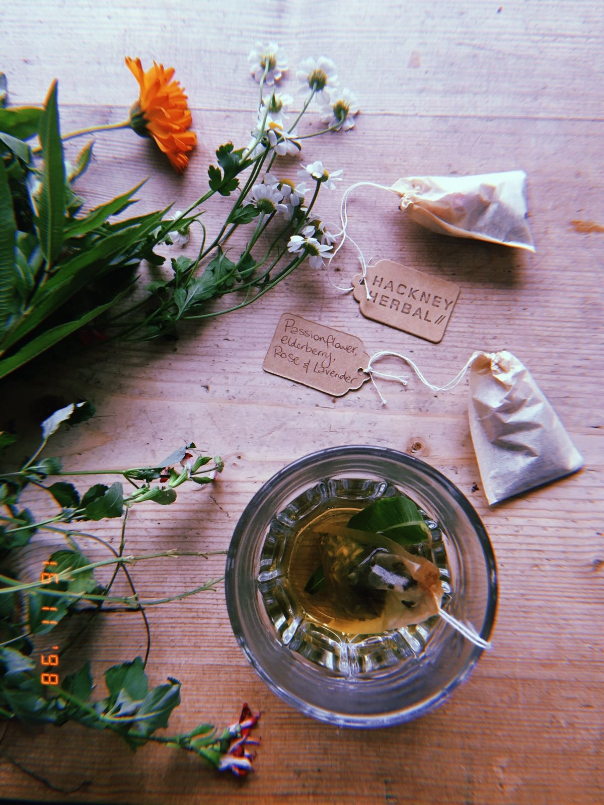 Hackney Herbal | Herbal Tea + Tea bags.jpg