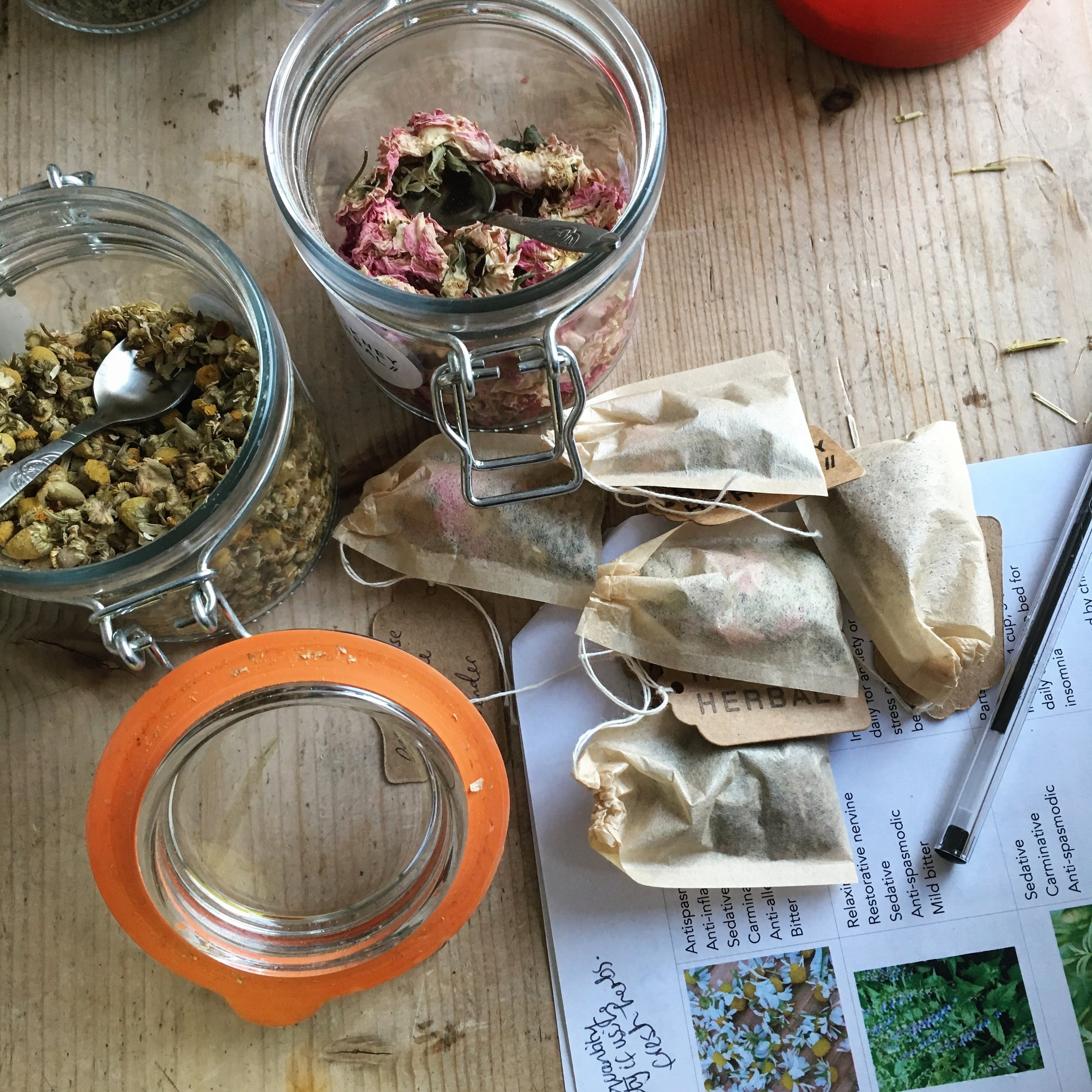 Hackney Herbal | Herbal Tea Bags and Herb Jar.jpg