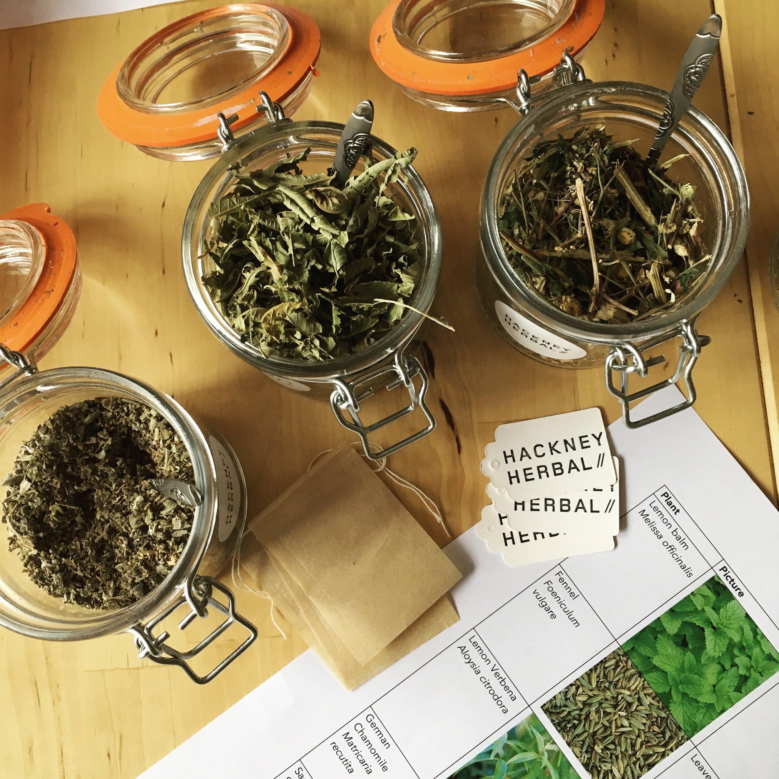 Hackney Herbal | Herbal Tea Workshop.jpg