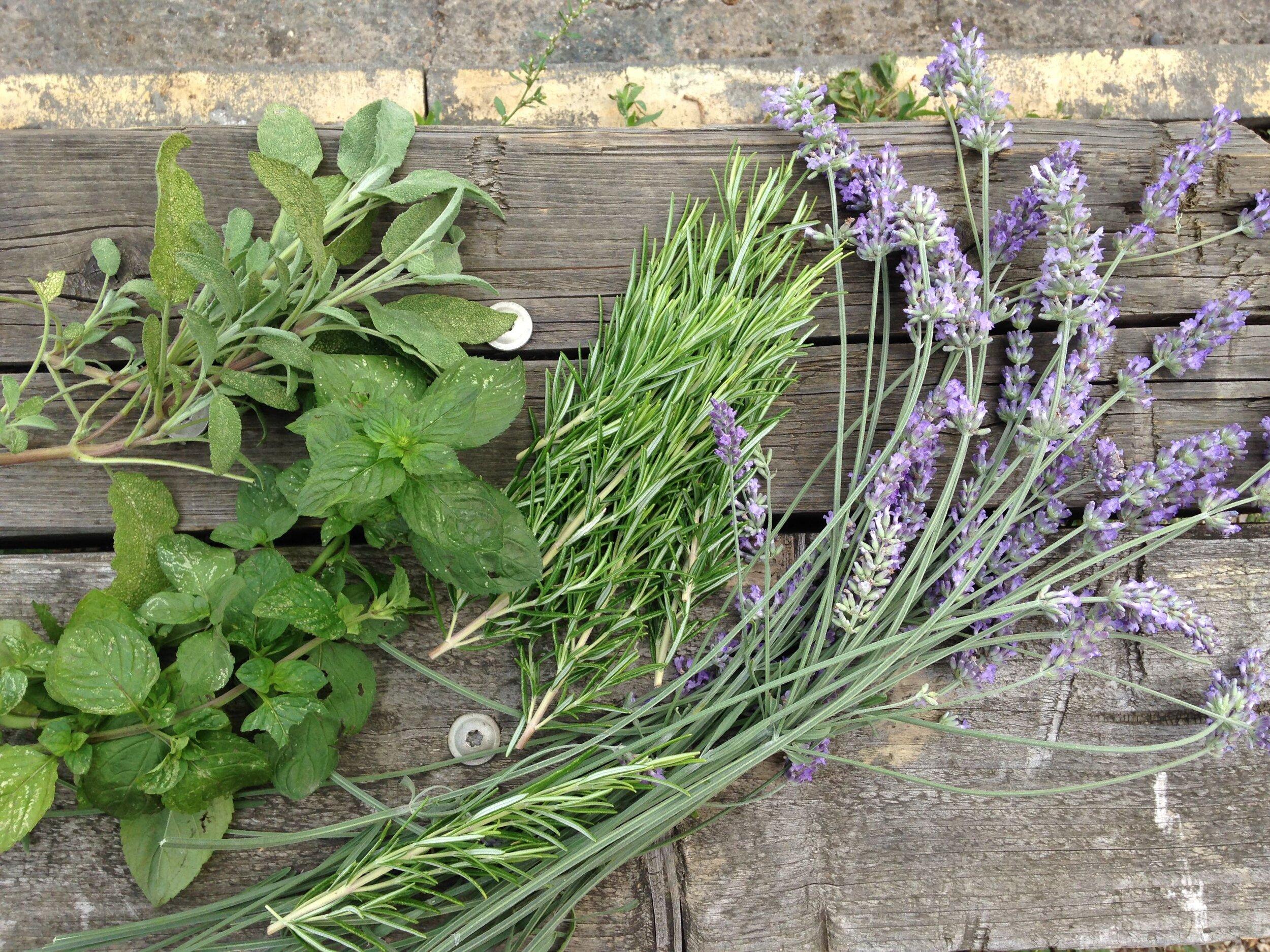 Hackney Herbal | Mixed herbs.jpg