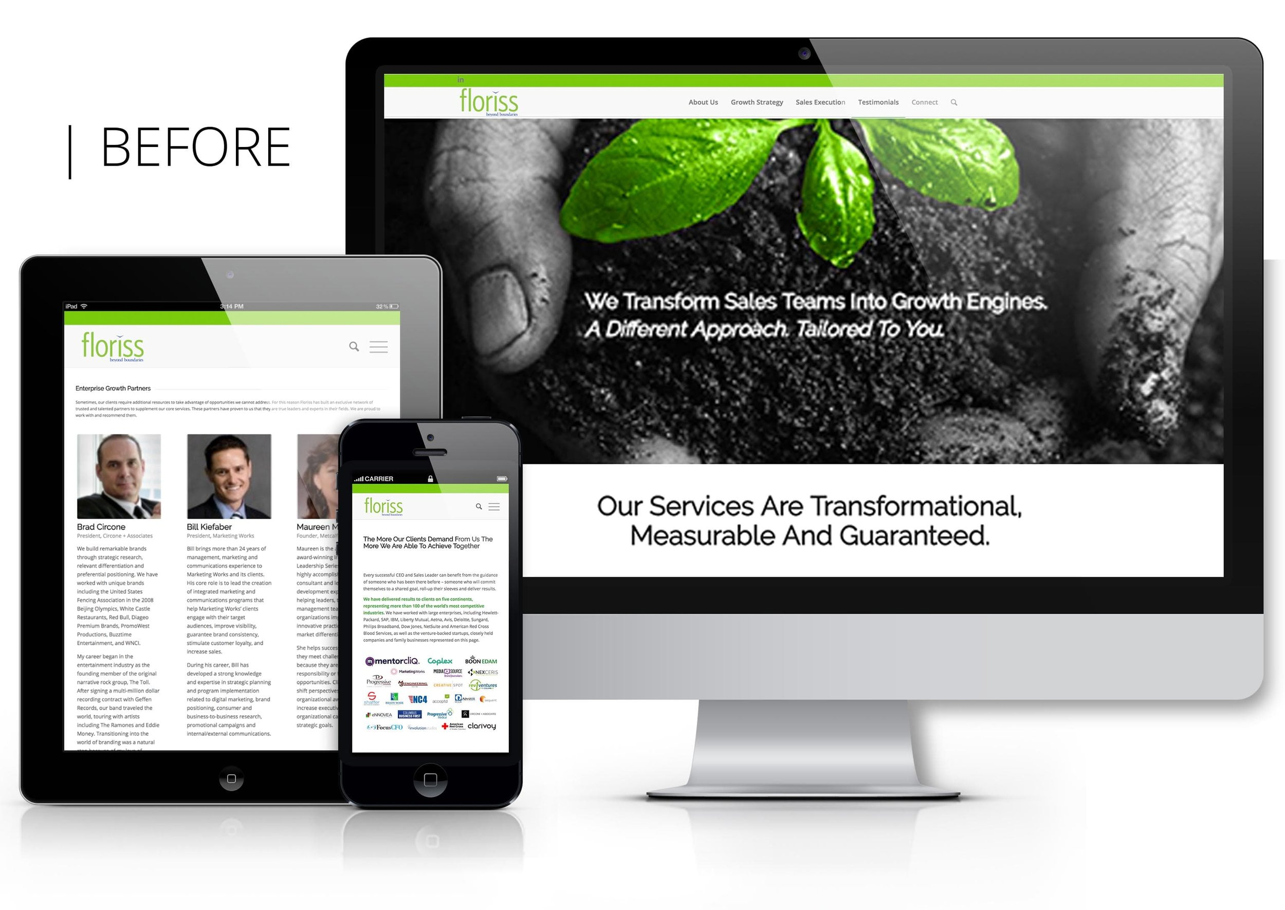 Floriss Group Website (Before)
