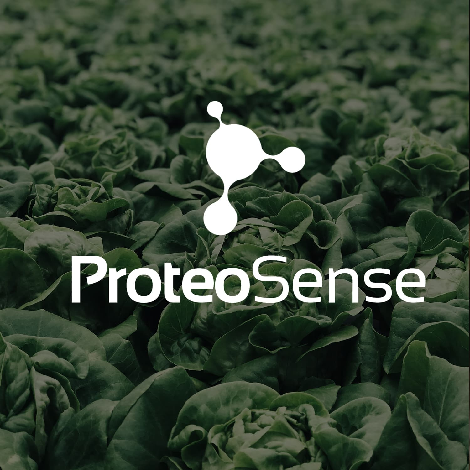 Proteosense Logo Display.jpg
