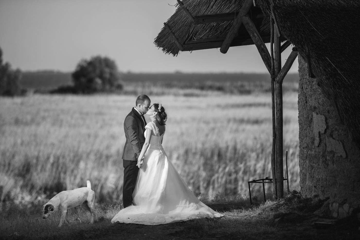 Destination Wedding Photographer_Marian Sterea_205.jpg