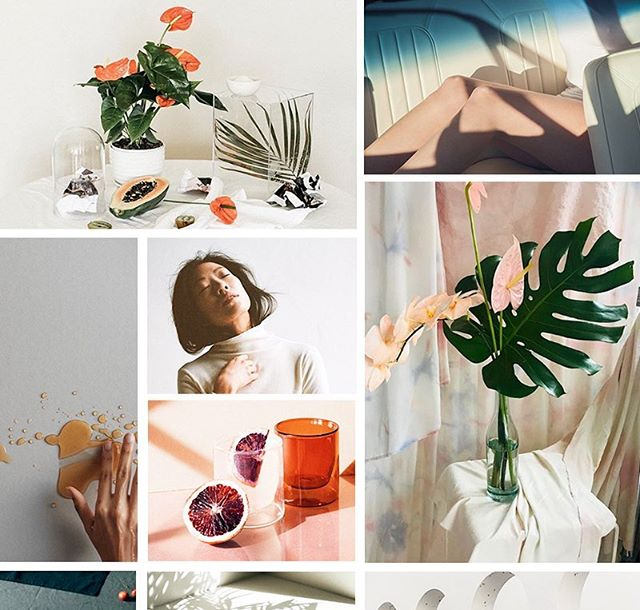 M O O D in prep for the next small brand photo shoot. I forget about intentionally making mood boards as opposed to just saving photos I like. It's one of my favorite things to do.