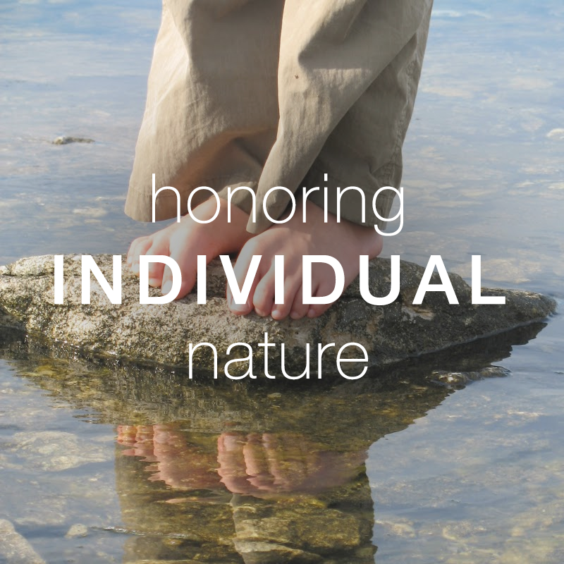 Copy of Honoring Individual Nature