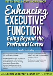 Intensive 2-Day Workshop: Enhancing Executive Function: Going Beyond the Prefrontal Cortex