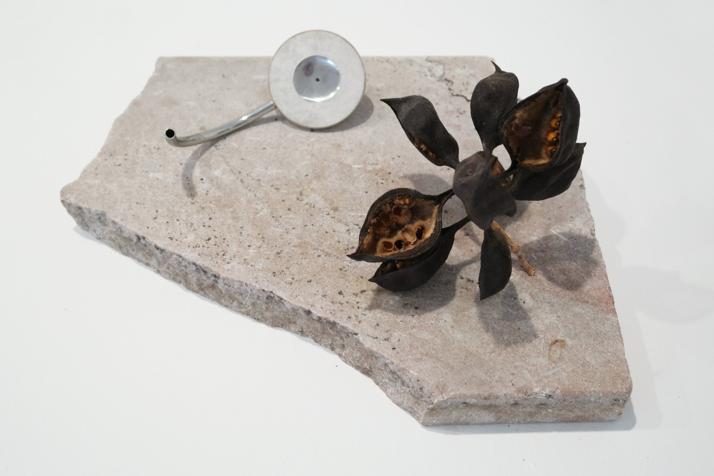 Summoning of the muse Stainless steel, clay, sand, marble, seed capsule, 2017