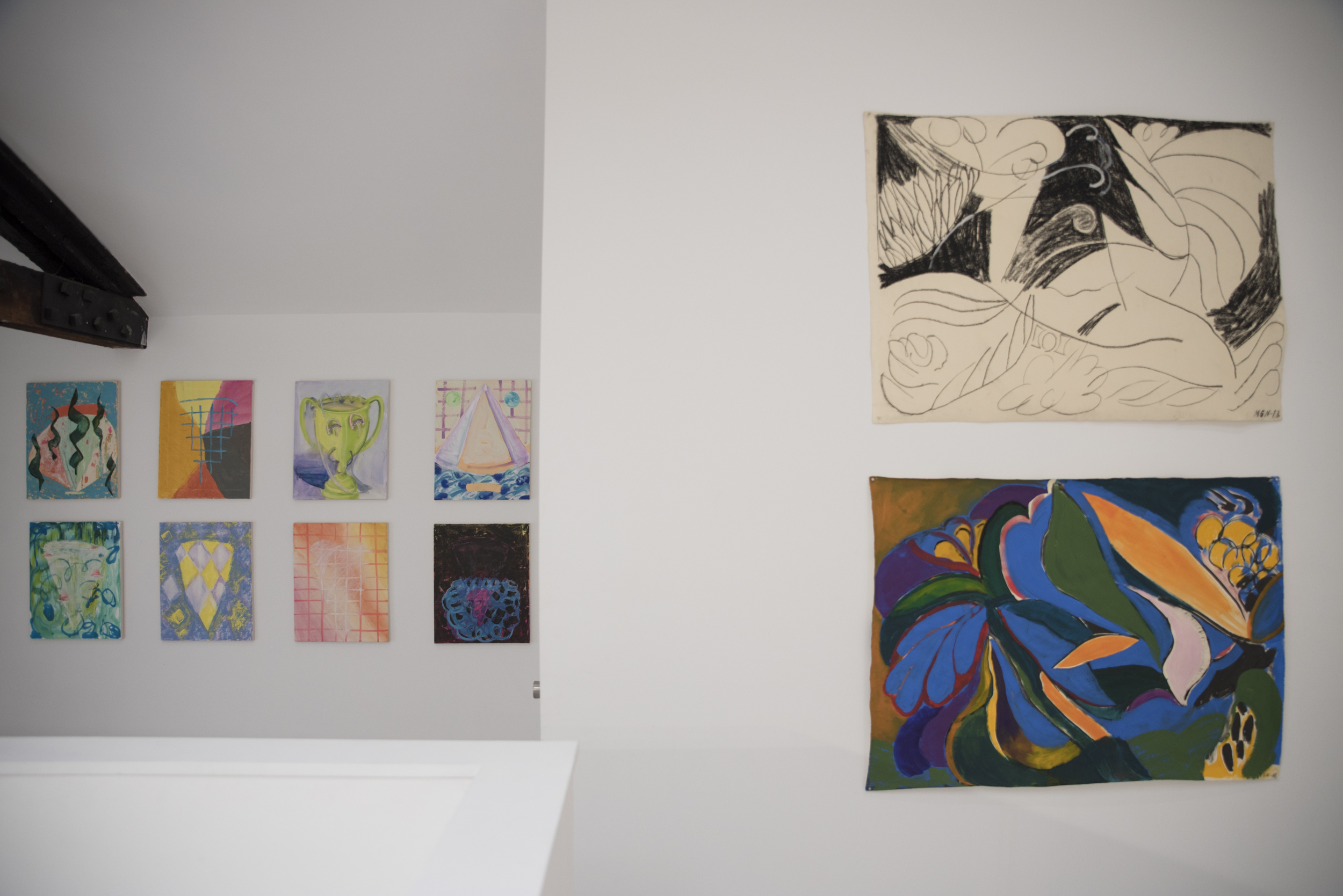Installation view of Virago at HILDE, 2017