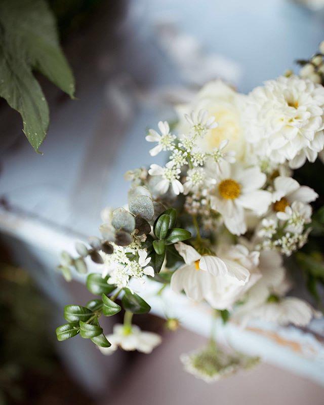 Happy Tuesday! ⠀ Photo   @imleahmichelle⠀ Flowers   @keepfloral