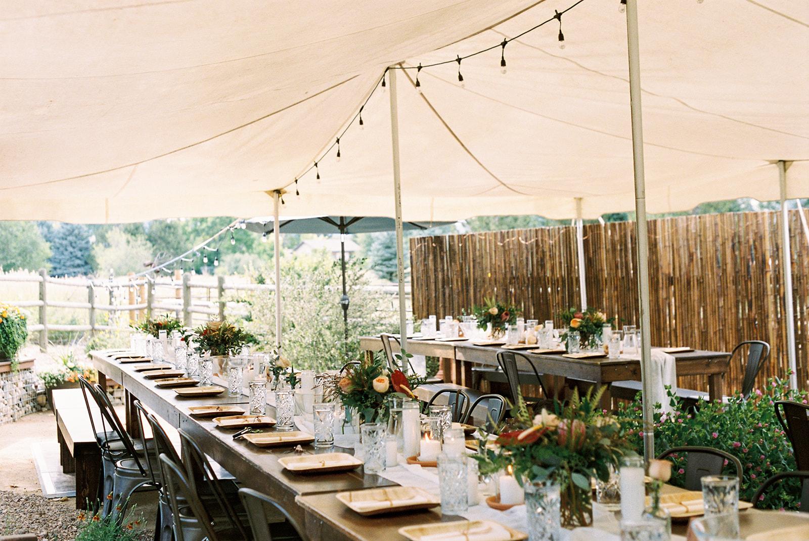 Fort-Collins-Wedding-Rentals