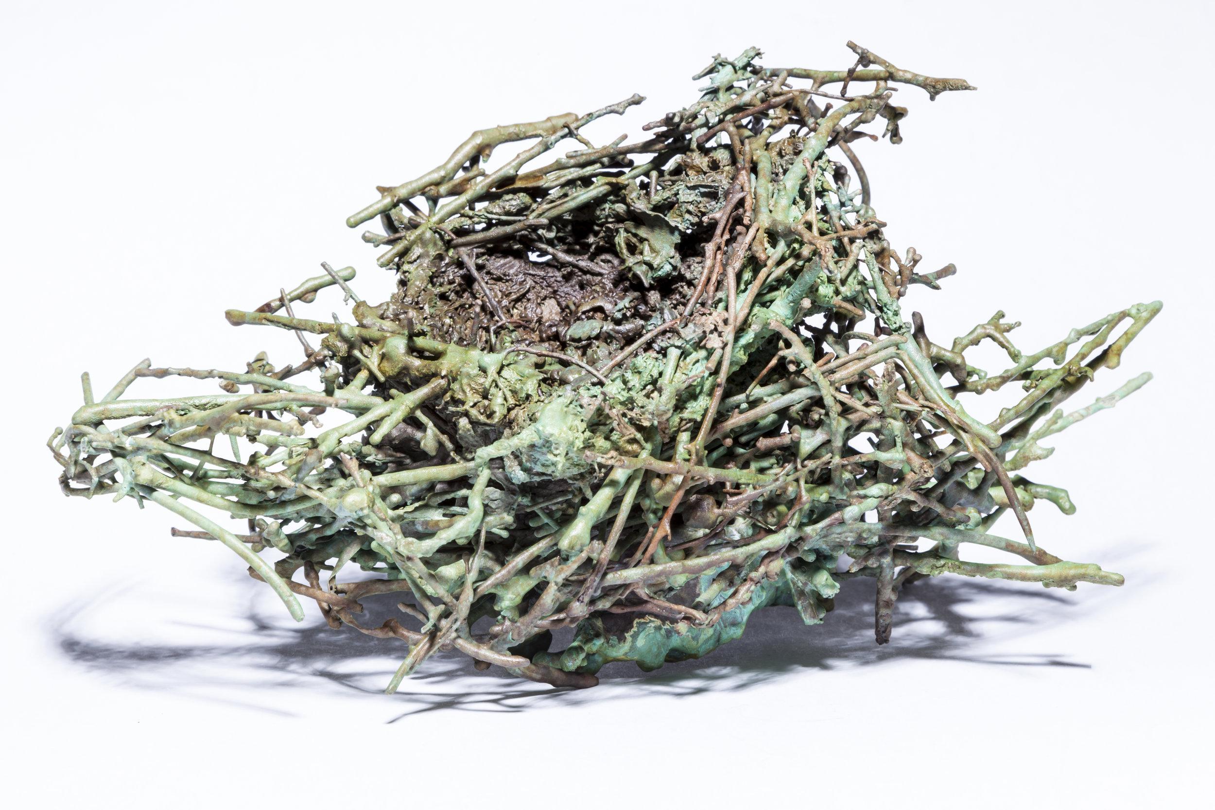 BaleCreekAllen Nests-025.jpg