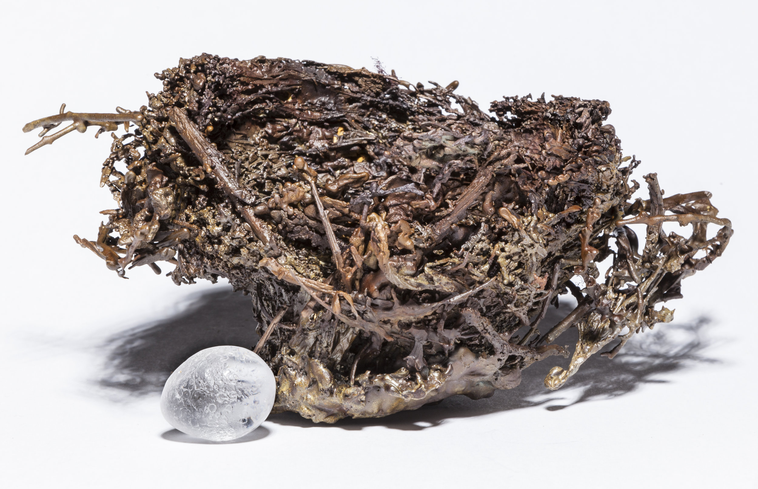 BaleCreekAllen Nests-029.jpg