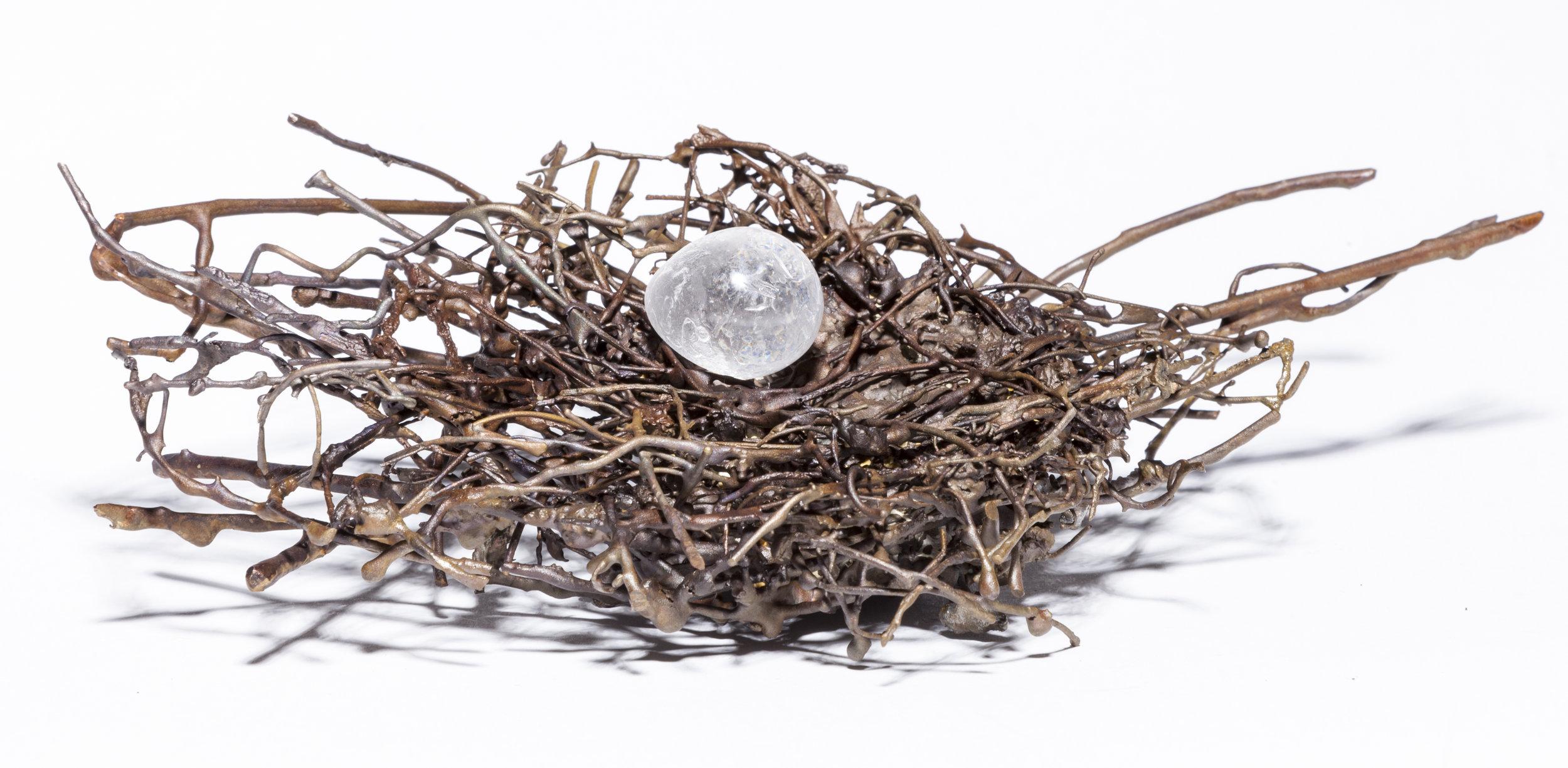 BaleCreekAllen Nests-031.jpg