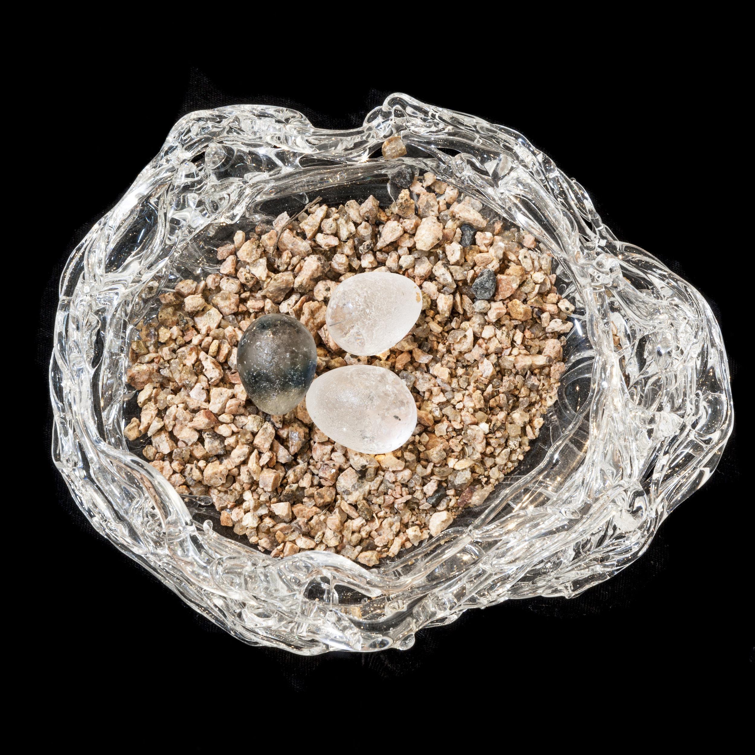 BaleCreekAllen Nests-055.jpg