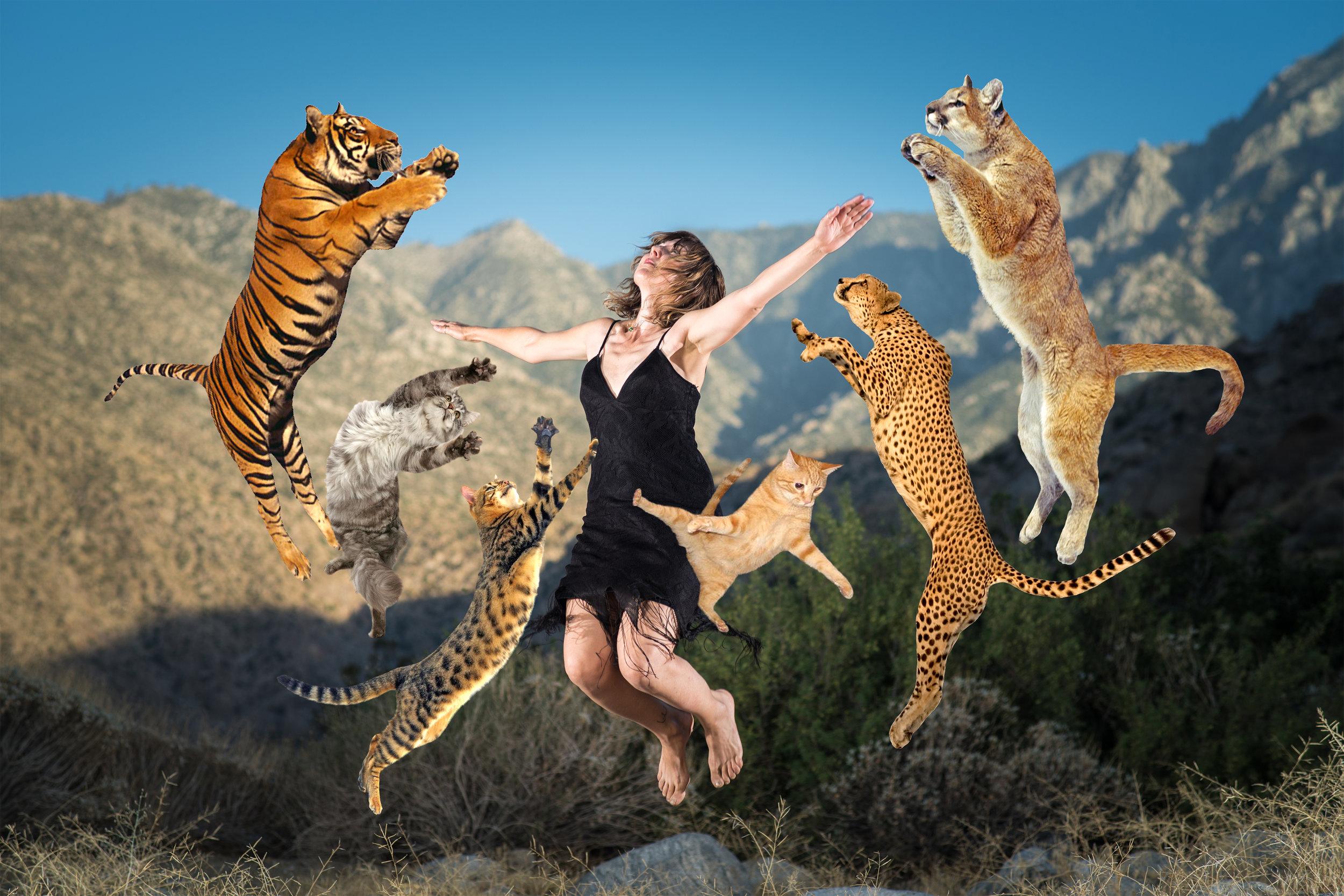 Bettina jumping with cats_B.jpg