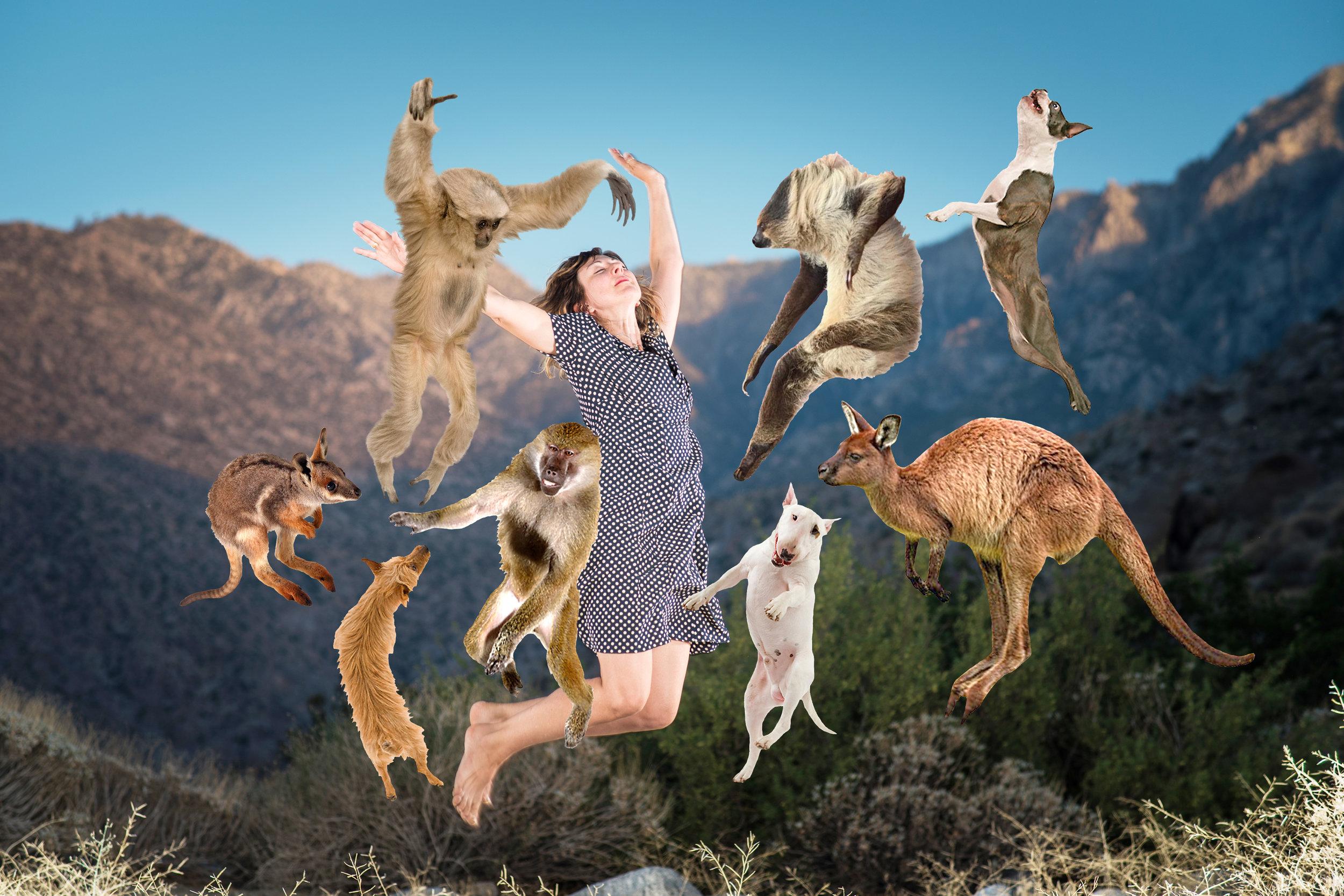 DottyJump with animals2_5676_B.jpg