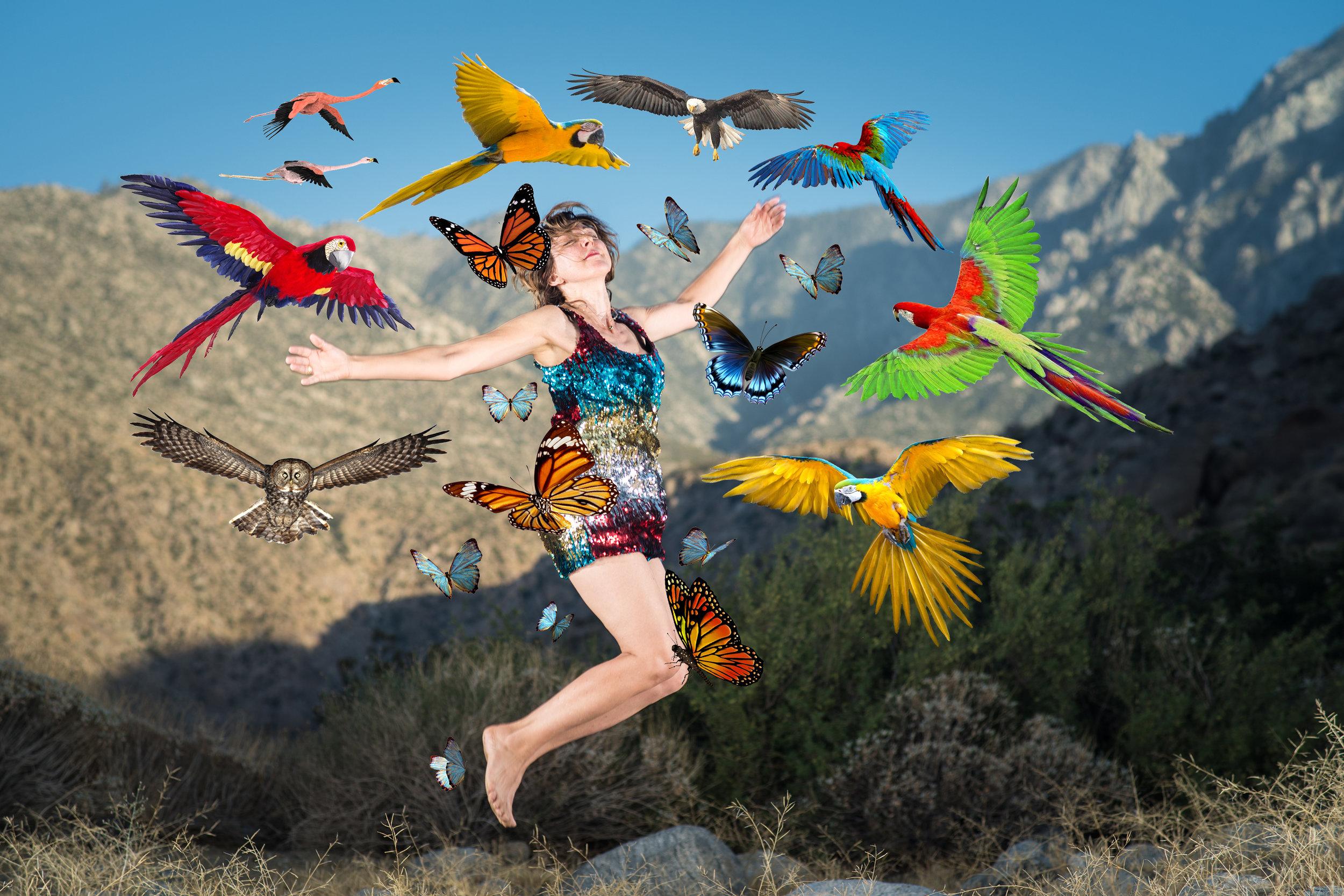 SparkleJump with birds_5616_B.jpg