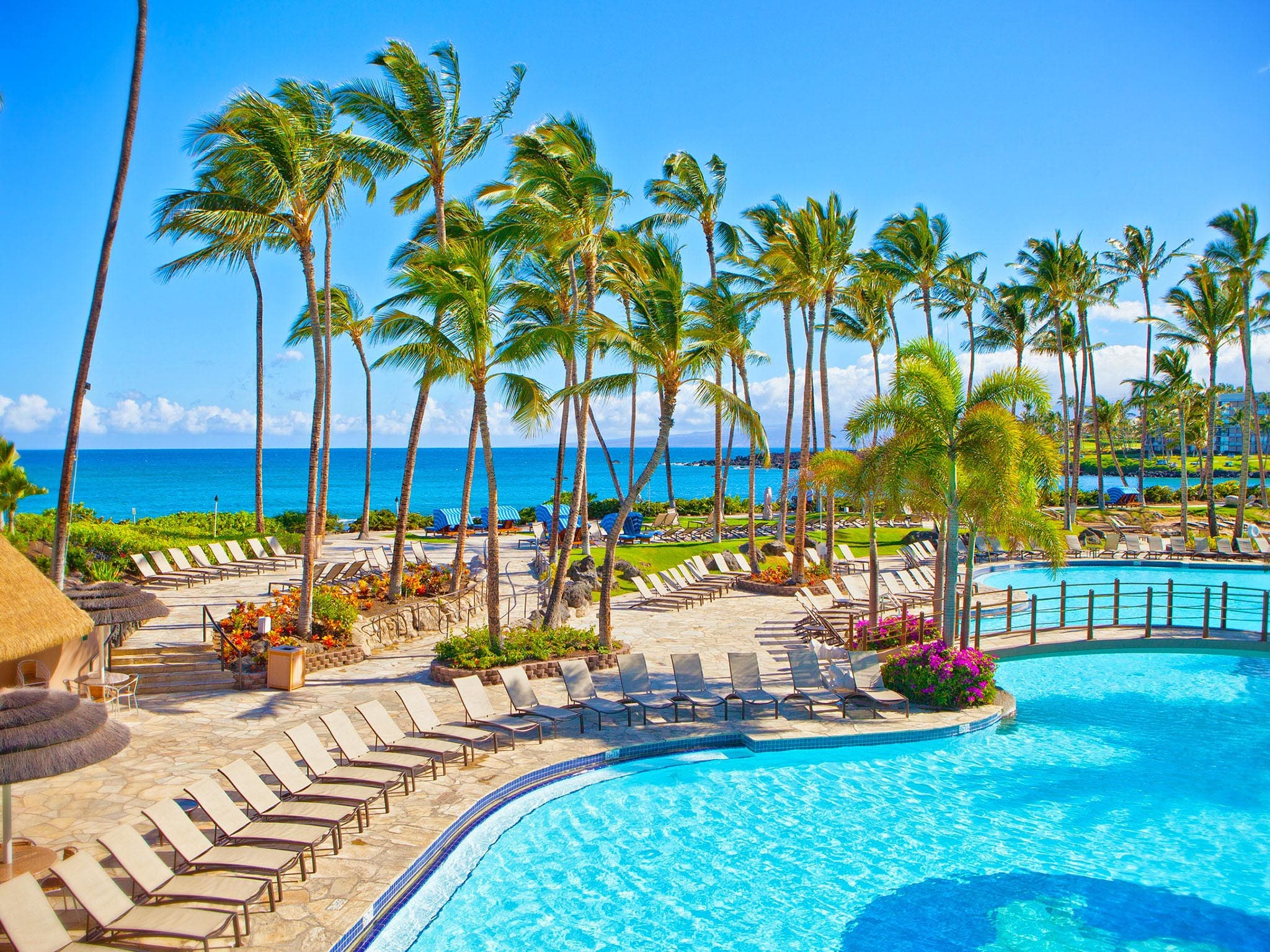 Hilton_Waikoloa_pool.jpg