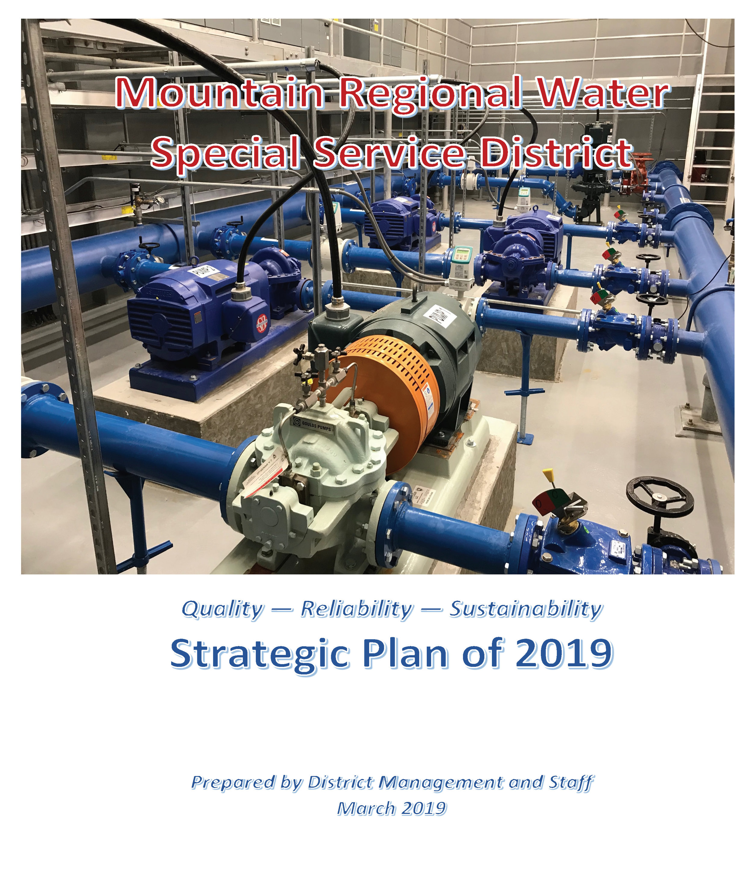 Click To Download the 2019 Strategic Plan