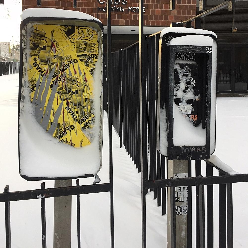 Payfauxn  winter