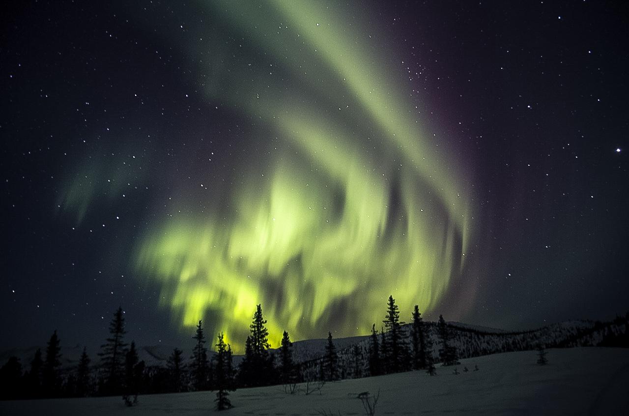 Northern Lights from the Chena Hot Springs Resort. Outside Fairbanks, Alaska.
