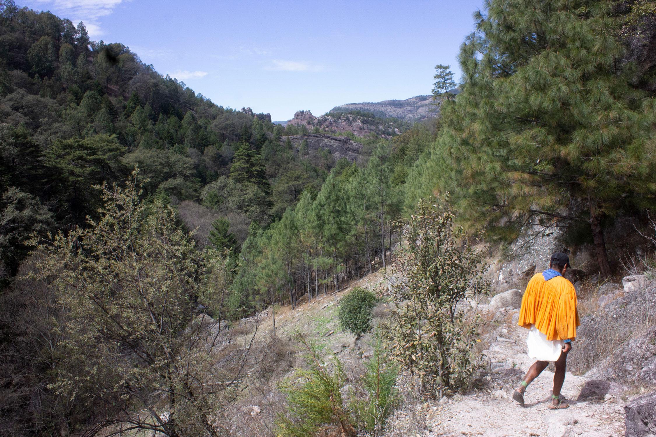 Manuel Luna leds some Mas Locos on a day-hike through the Barrancas.