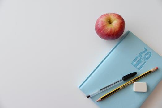 Peach Blossom Homeschooling - A Santa Clara based homeschool education.