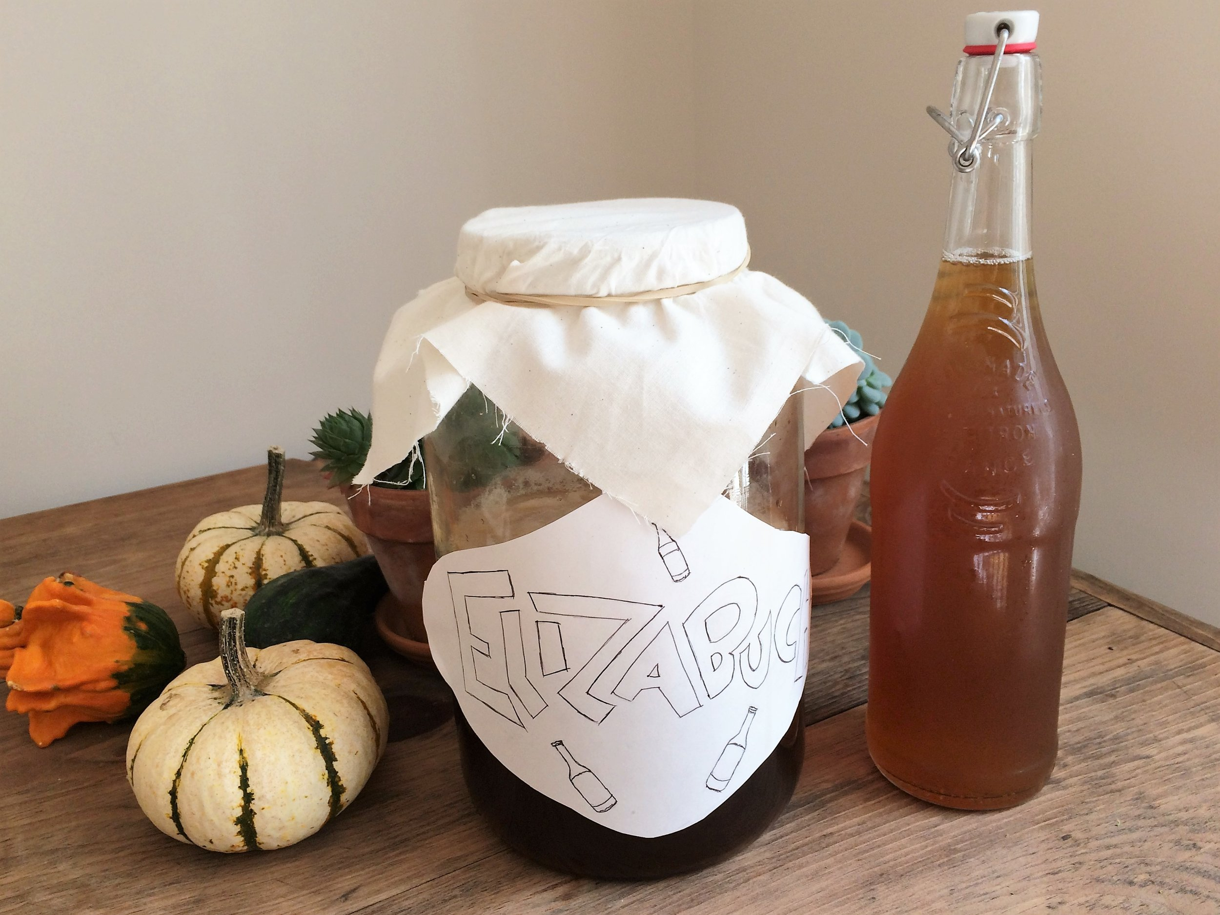 """""""elizabucha,"""" (h/t matt for the name) on the left with the fermenting black tea, dissolved sugar and scoby, and on the right, my kombucha in a jar for its second ferment with ginger."""