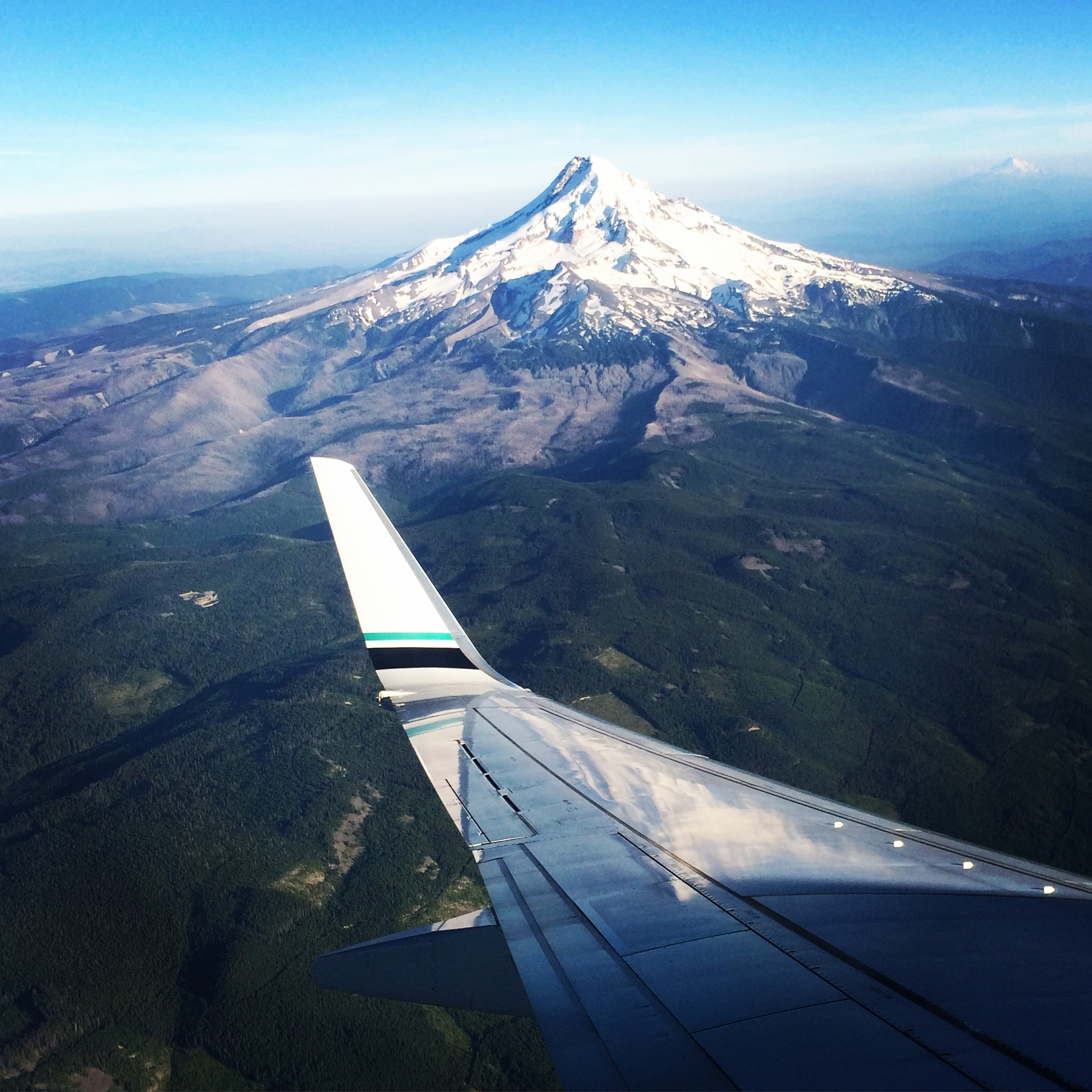 flying into portland || planting my roots