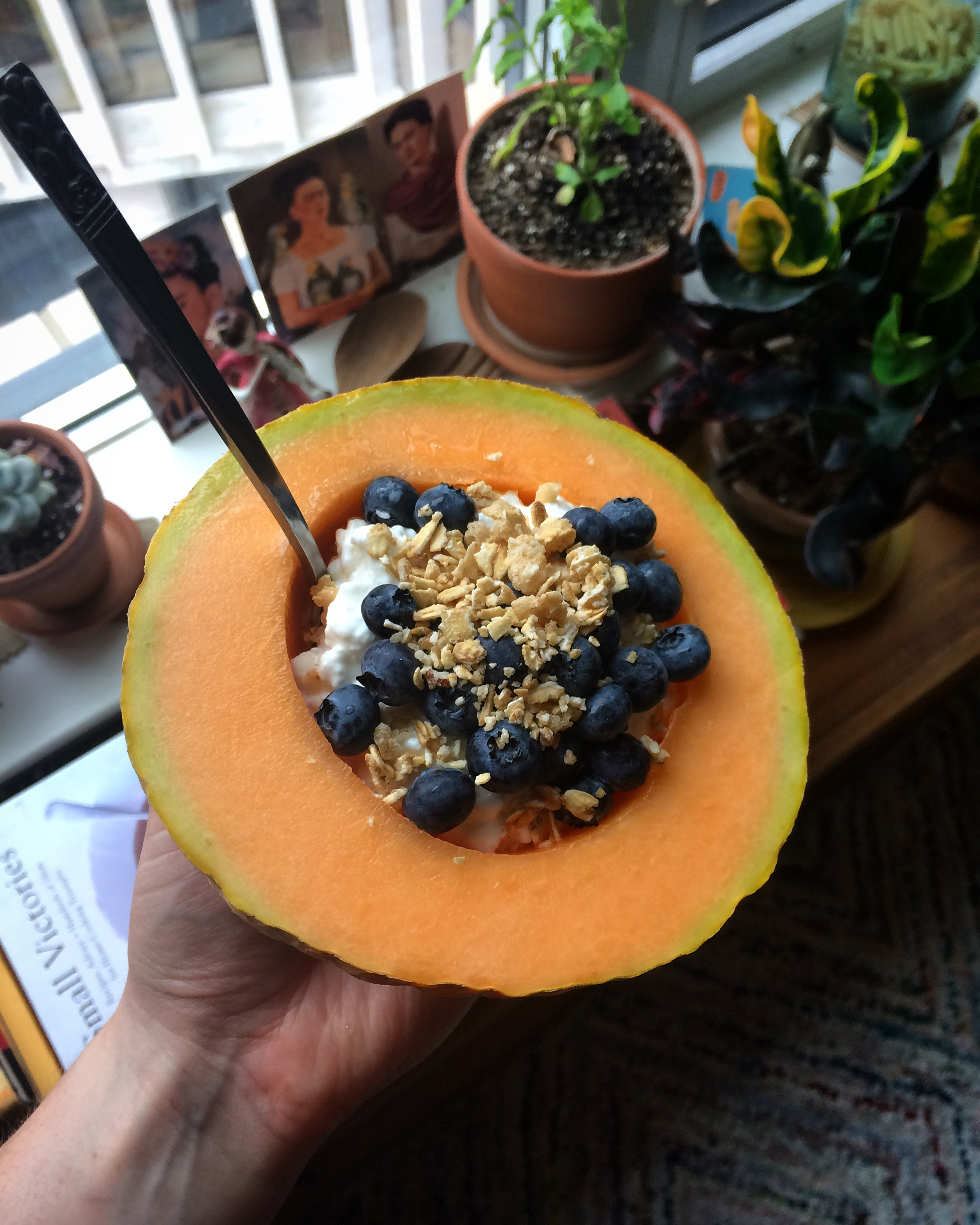 cantaloupe filled with cottage cheese, blueberries and granola || planting my roots