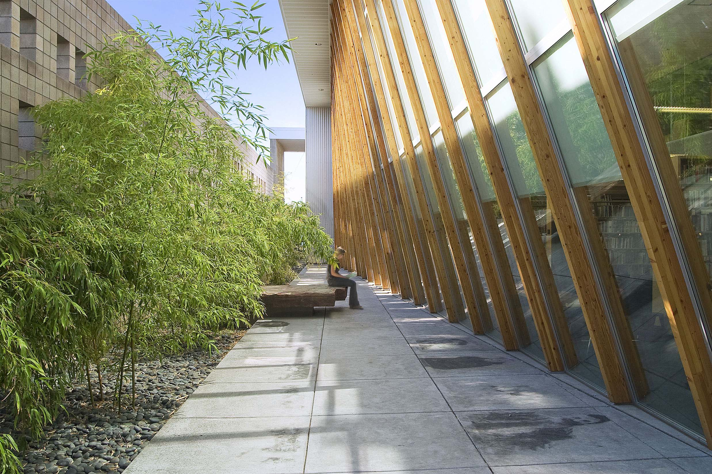 Bamboo-Garden--1.jpg