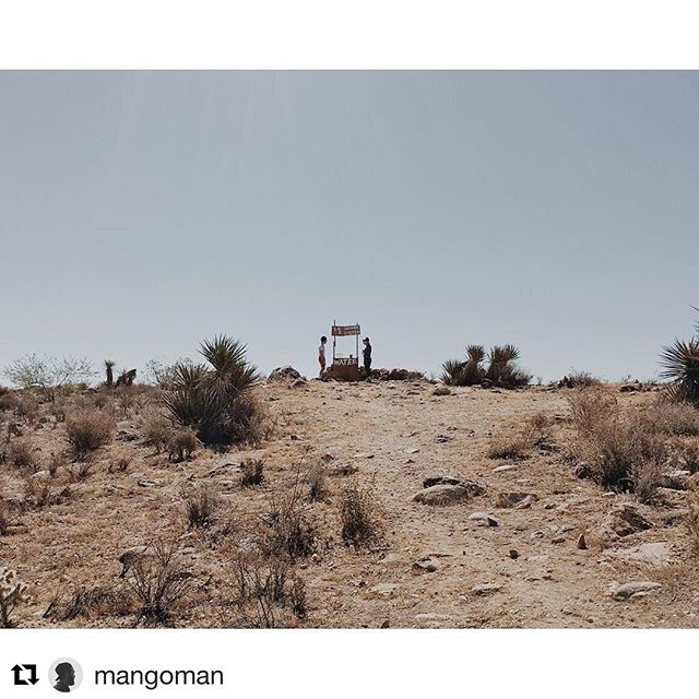#Repost @mangoman with @repostapp ・・・ 061816 excited about this little indie. ☺️🎬🎨 #therelationtrip #joshuatree