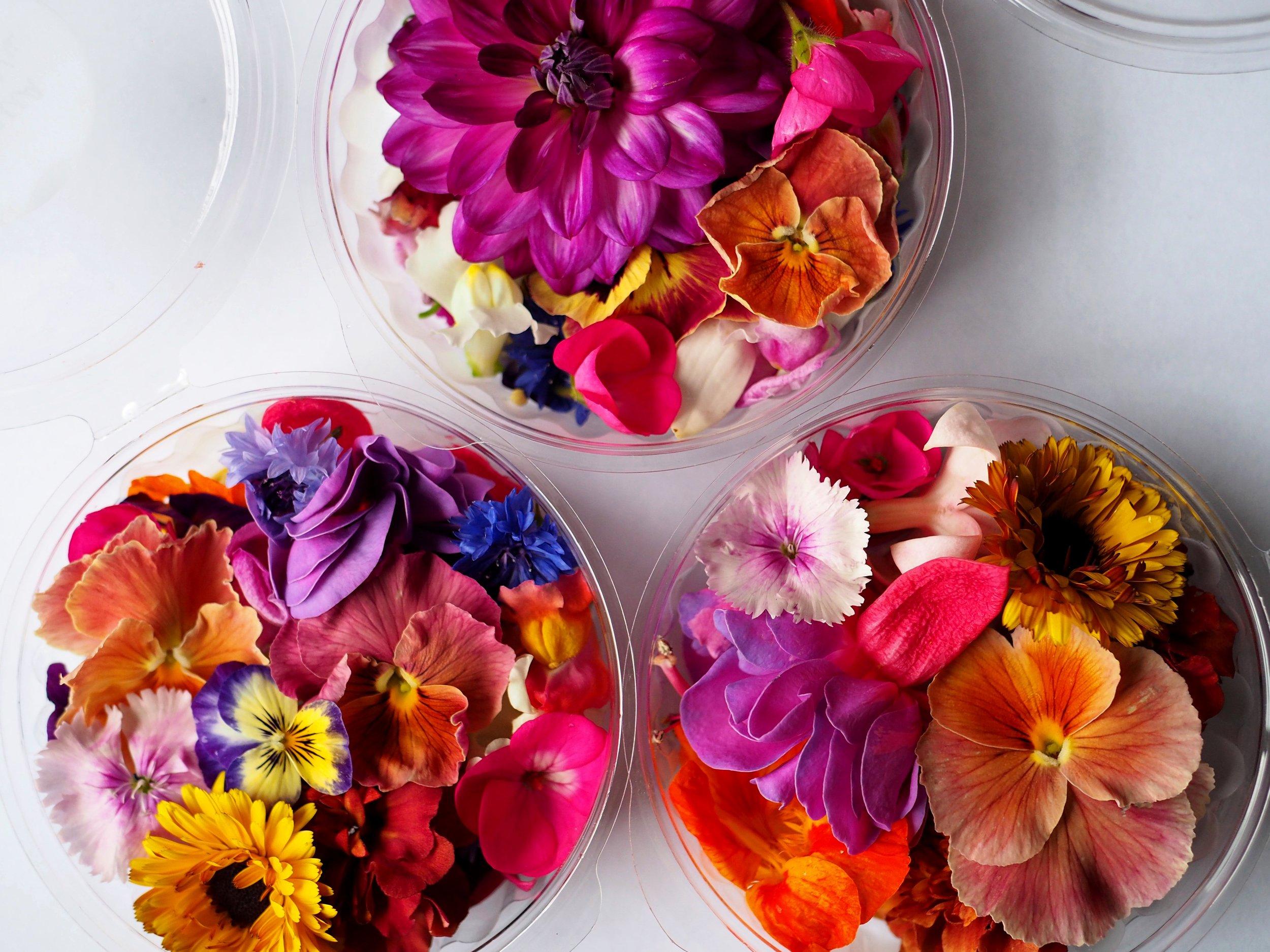 2018-03-23 Edible flowers 006.JPG