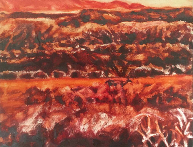 Deer at Limantour Marsh Under Painting (30 April)