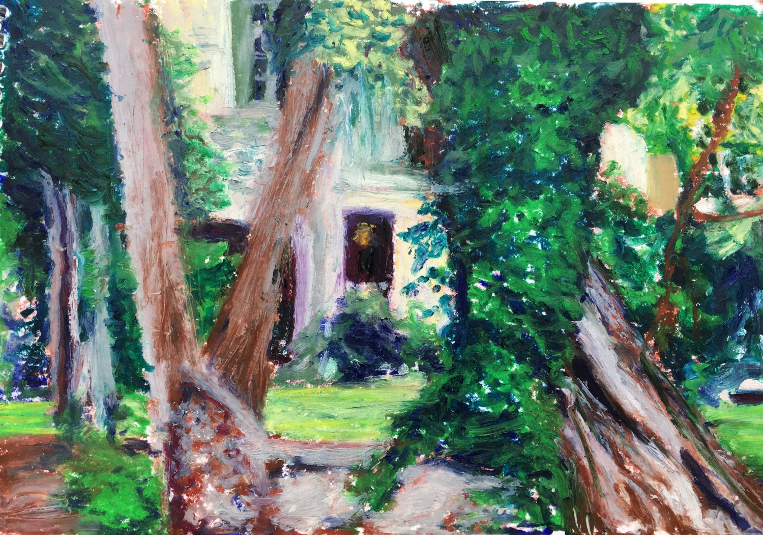 Oldest Tree in Paris at Square Rene Viviani (Oil Pastel 6x9 in - June 13 2018)